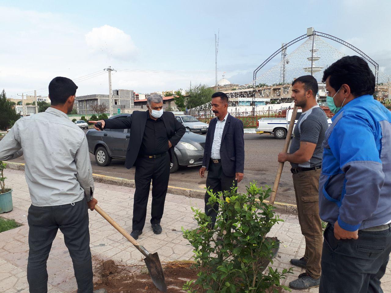 آغاز طرح درختکاری و زیباسازی شهری در لوشان